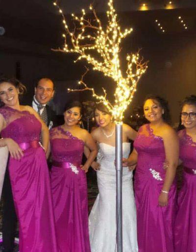 vestidos de dama Pachuca | 7717901016 | Irma Caroline